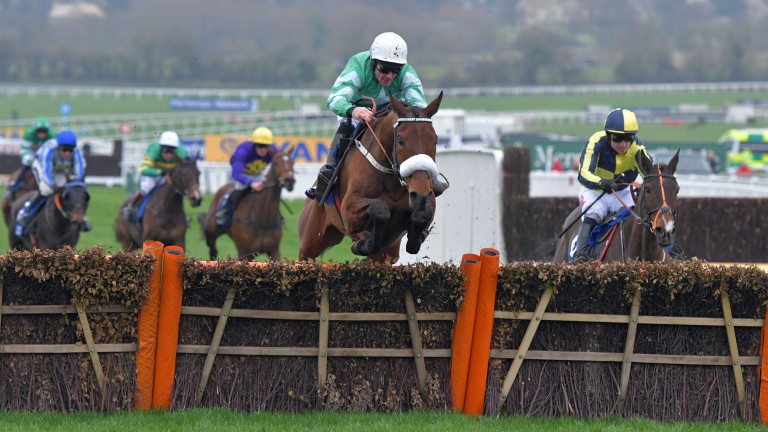 Presenting Percy went up a whopping 19lb for his win in the Pertemps Final at Cheltenham