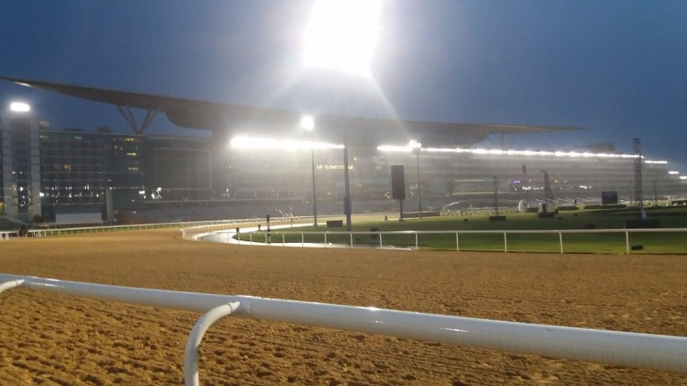 Meydan: hosts it's biggest raceday of the year