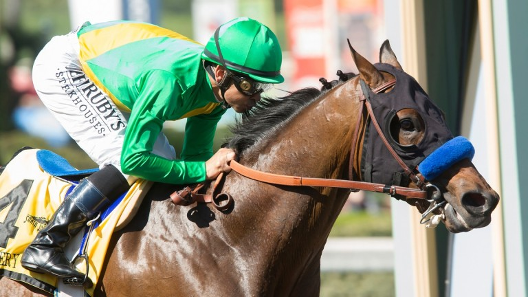 Mastery on his way to victory in the Grade 2 San Felipe Stakes