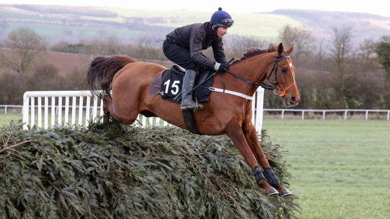 Definitly Red (Danny Cook) schooling over Grand National-style fences
