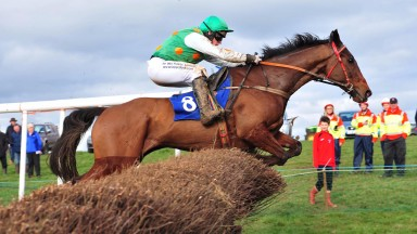 The Pigeons PTP 19-3-17 SPRINTINGFORGOLD & Rob James jump the last to win the Open Lightweight Race.(Photo HEALY RACING)
