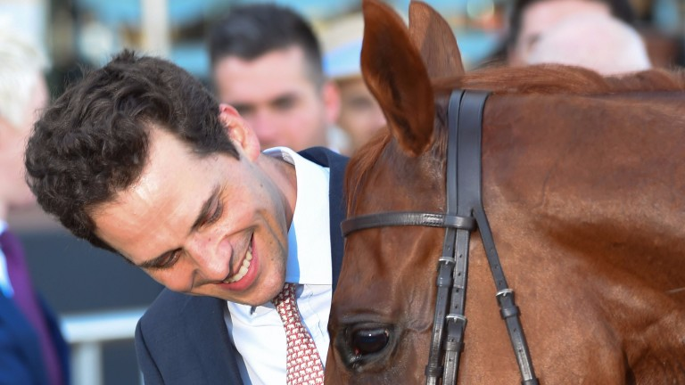 Matt Cumani: trainer is in hot water over strangles outbreak