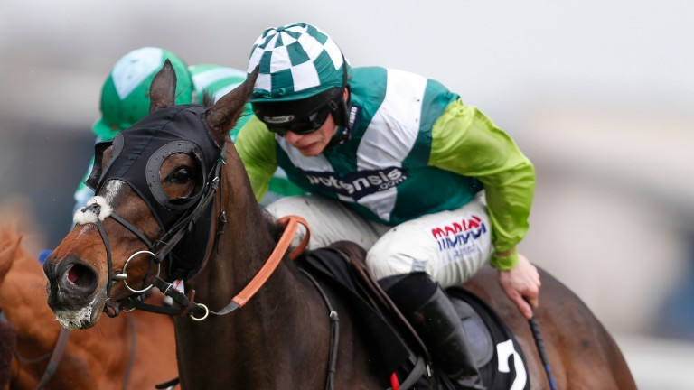 Just A Par: will remain in the care of Paul Nicholls