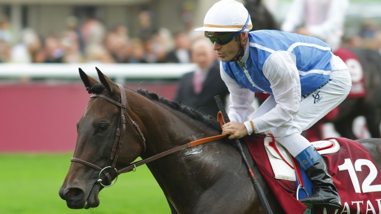 Plumania: is already the dam of two winners