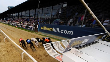 Greyhound racing has declined in popularity over recent decades