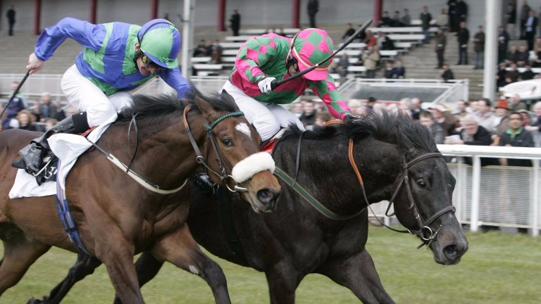 Tough As Nails (right) beats Whip Rule at the Curragh in 2011 only to lose the race later