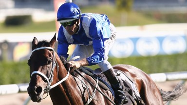 Winx: wondermare bids for back-to-back victories in the Warwick Stakes