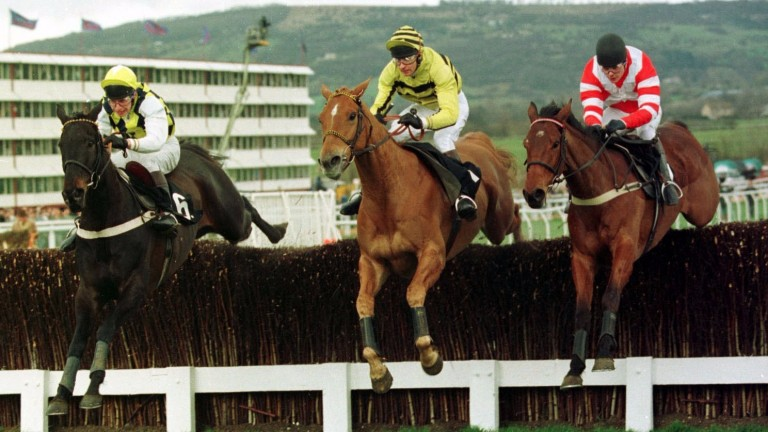 Viking Flagship (right) en route to victory in the 1994 Champion Chase