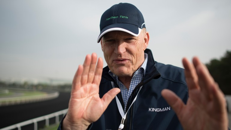 John Gosden: happy to use Adam Kirby