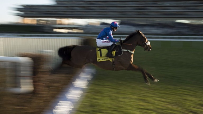 Cue Card: popular chaser back for more in the Haydock highlight