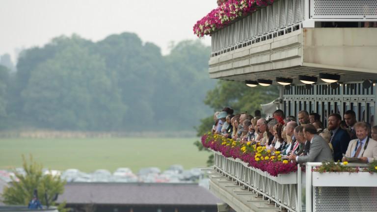York: no race worth less than £70,000