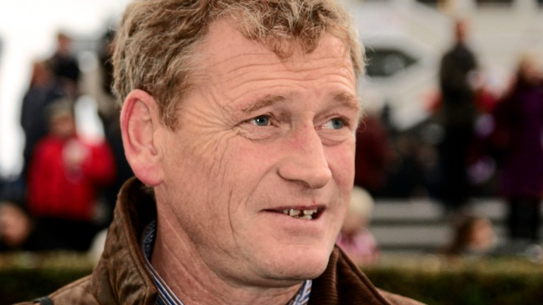 Tony Mullins: hoping for more success from Princess Zoe