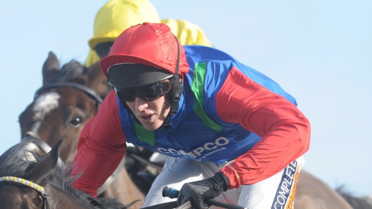 James Ridley: cost his mount certain victory at Newbury