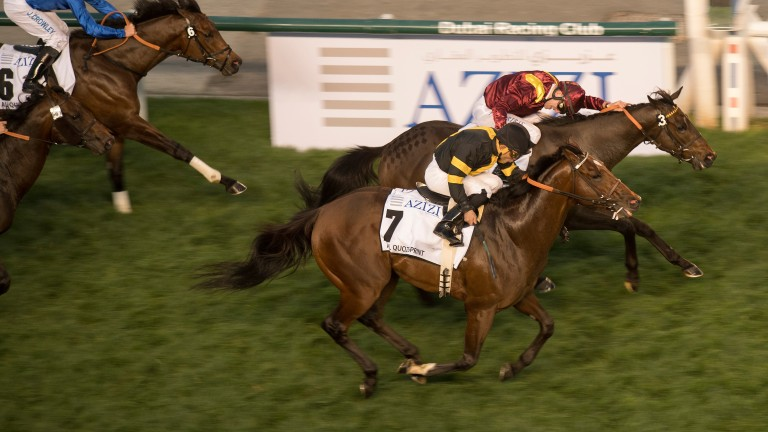 Long On Value (near side) is pipped by The Right Man in the Al Quoz Sprint
