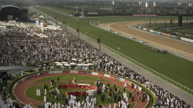 Dubai racefans turn out in force on World Cup day, captured from the Meydan stands by the Racing Post's award-winning photographer Edward Whitaker as the runners in the Al Quoz Sprint tear down the straight