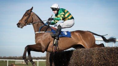 Great Field was a runaway winner of the feature chase at Thurles on Saturday