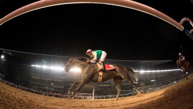 Arrogate (Mike Smith) wins the Dubai World CupDubai 25.3.17 Pic: Edward Whitaker