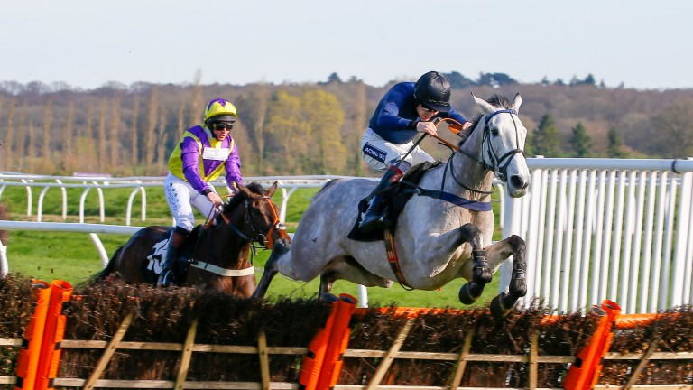 Snow Leopardess: impressive winner at Newbury last season