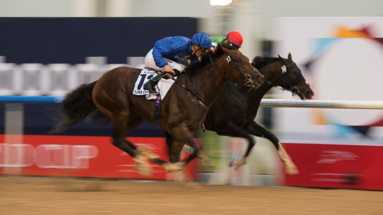On the nod: Favourite Thunder Snow (blue silks) narrowly gets the better of a protracted battle to win the UAE Derby