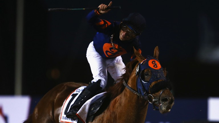 Sweet success: Joel Rosario celebrates after Mind Your Biscuits runs out an impressive winner of the Golden Shaheen