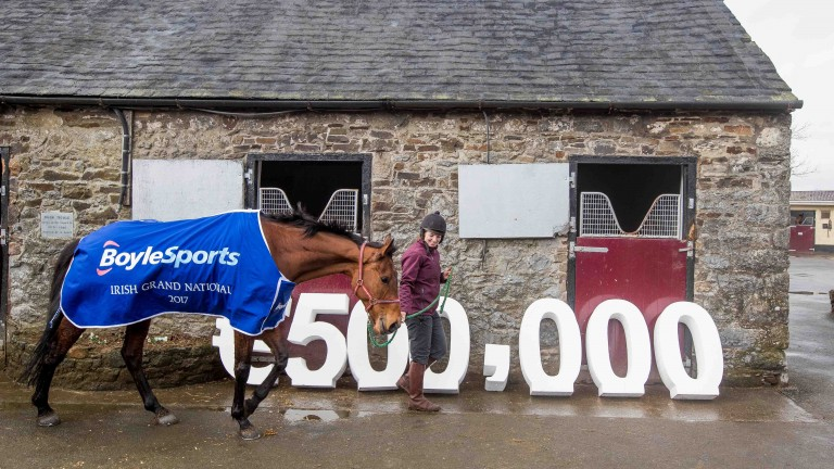 Last year's winner Rogue Angel parades at trainer Mouse Morris's yard during a promotion event for the 2017 BoyleSports Irish Grand National
