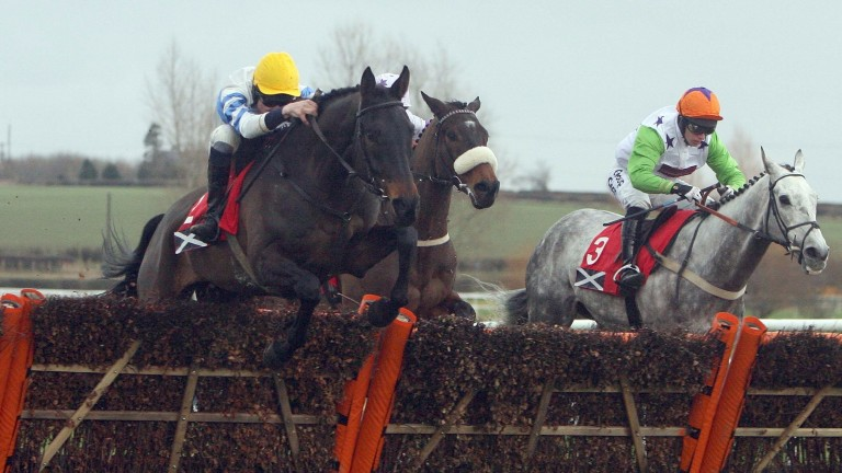 Knockara Beau takes a step up in class in his stride