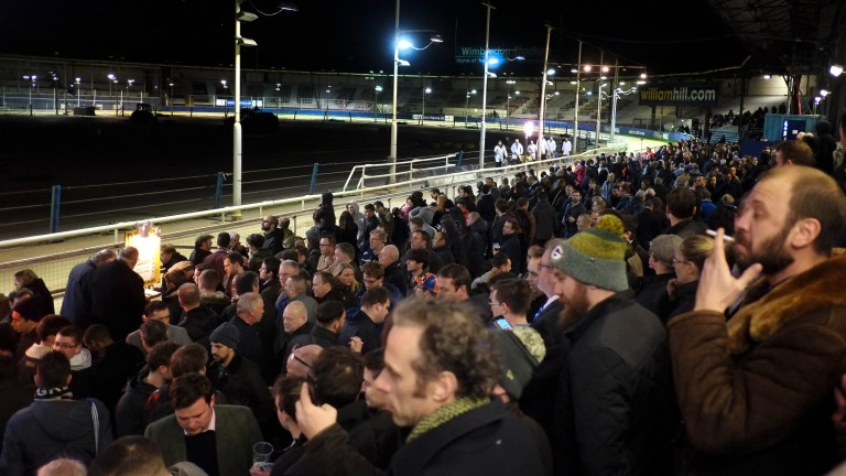 Standing room only: punters pack the grandstand as they try to get a view of the action