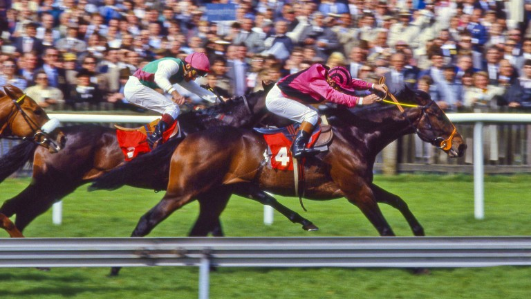 Bellotto (white sleeves): just fails to close the gap on Don't Forget Me in the 2,000 Guineas
