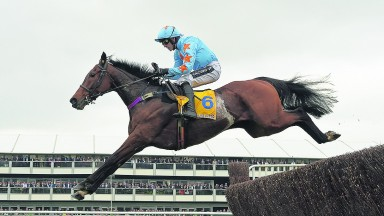 Un De Sceaux: the Ryanair Chase winner will clash with Fox Norton at Punchestown