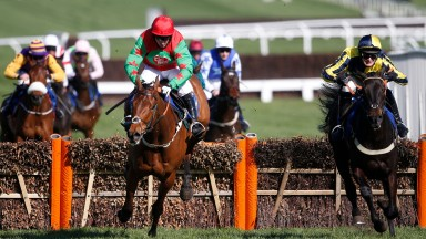 Neon Wolf (left) lands awkwardly when challenging Willoughby Court at the last at Cheltenham