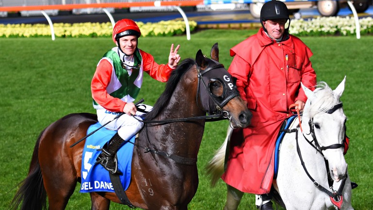 Rebel Dane after winning the Manikato Stakes at Moonee Valley last October