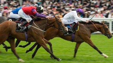 Top team: Prince of Lir wins the Norfolk at Royal Ascot for Captain Bob's connections of The Cool Silk Partnership and trainer Robert Cowell