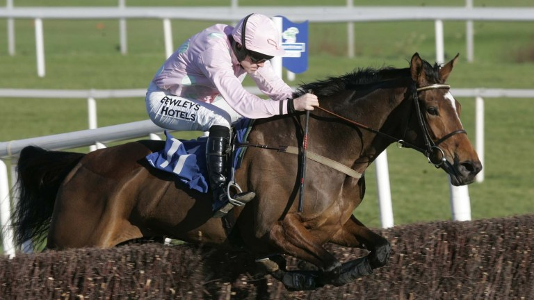 Pomme Tiepy jumps the last on her way to winning a Grade 2 novice chase at Leopardstown