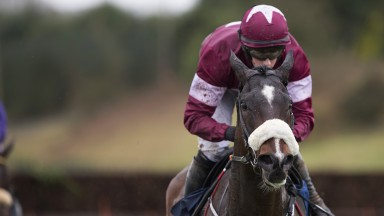 Big-race success: Gordon Elliott extended his lead at the top of the trainers' championship with General Principle