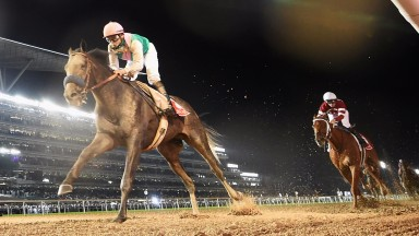 Arrogate: his Dubai World Cup success made him at least the equal of Frankel,in the view of Keith Loads