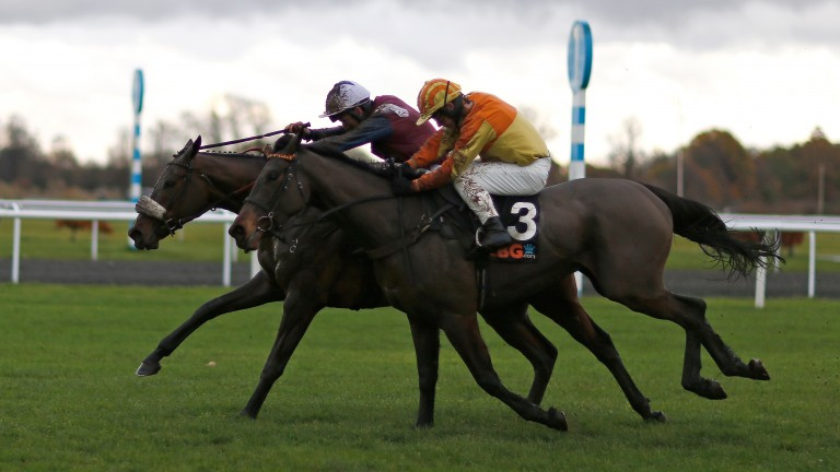 Surtee Du Berlais (far side) winning the Listed OLBG Mares; Hurdle at Kempton in November