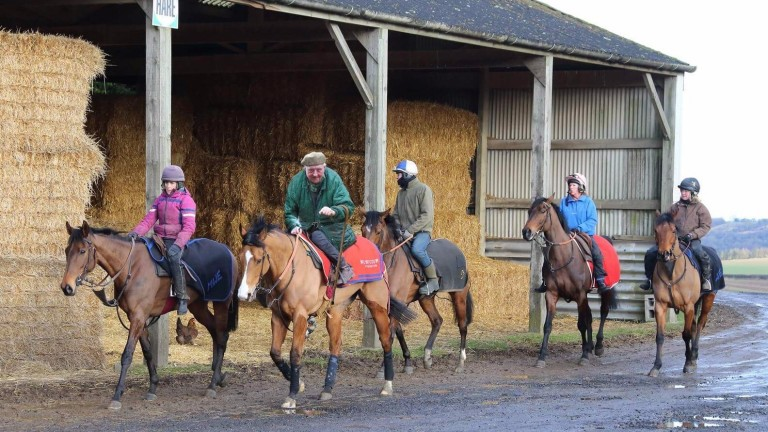 Mick Easterby pictured heading out onto the gallops on Hoof It