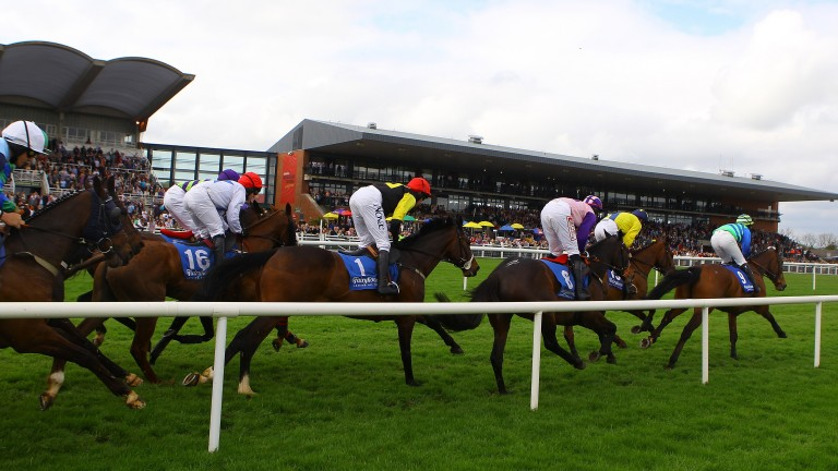 Fairyhouse: three Grade 2 contests feature on Pick 6 card