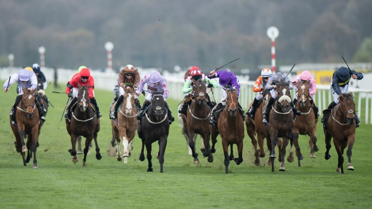 Bravery (right) finishes well to win last year's Lincoln
