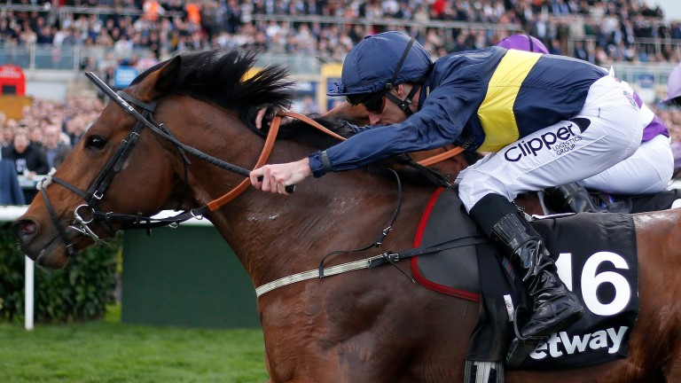 Bravery: landed the Doncaster contest on his debut for O'Meara