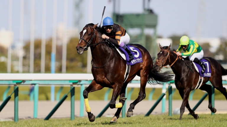 Kitasan Black (Yutaka Take) adds to his Japan Cup laurels with victory in the Osaka Hai, upgraded this year to Grade 1 level