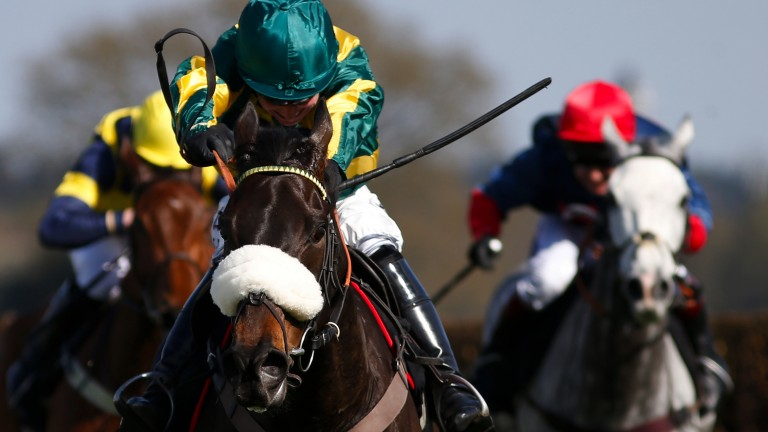 Present Man (noseband): set to be partnered by Bryony Frost