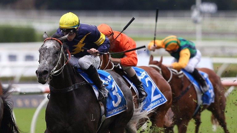 Chautauqua: won six Group 1s in a turbulent but glittering career