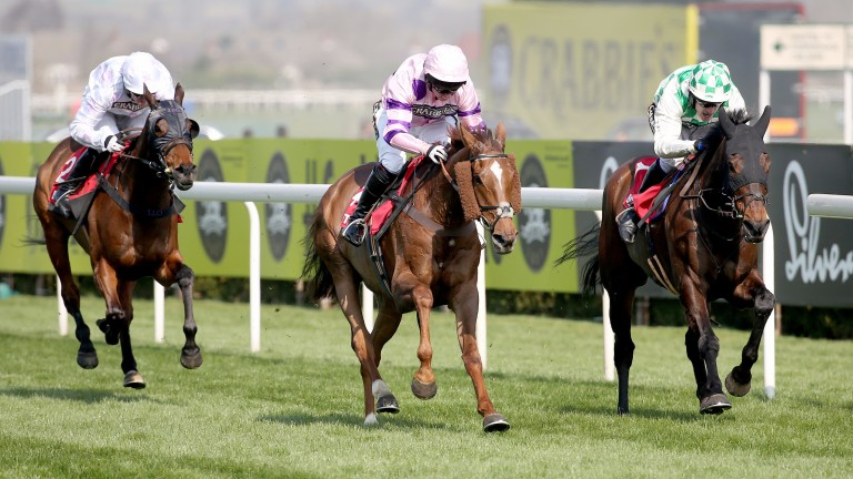 Silviniaco Conti (centre): won over a £1 million in prize-money