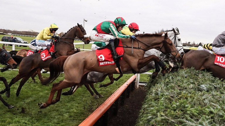 Vieux Lion Rouge (9), or Old Red Lion, tackles a National fence