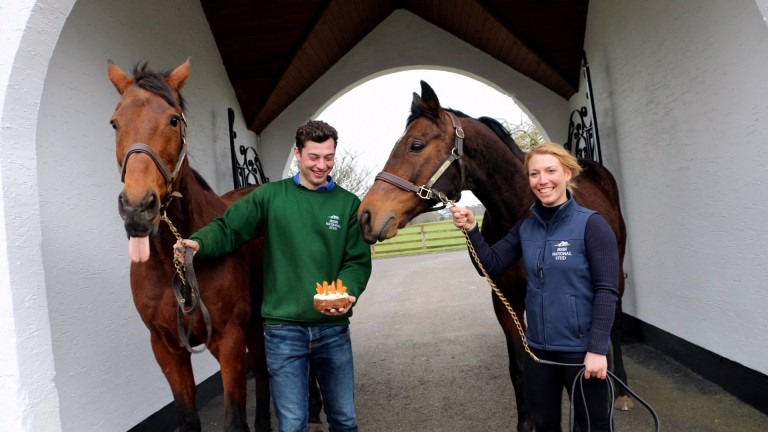 Hardy Eustace (left) and Hurricane Fly enjoy some birthday cake