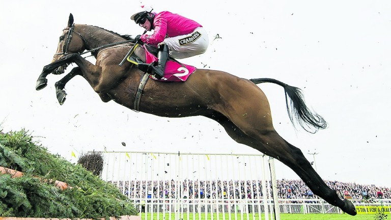 Blaklion and Ryan Hatch fly a fence in the Mildmay Novices' Chase at Aintree last year