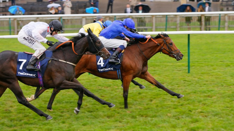 Local Time (blue): wins the Group 3 Oh So Sharp Stakes at Newmarket