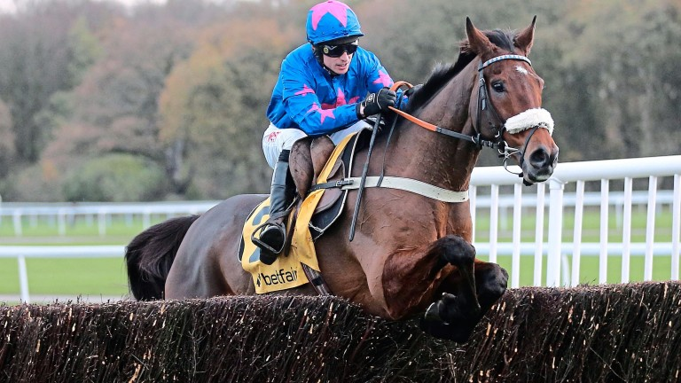 Paddy Brennan pictured aboard Cue Card in the Betfair Chase