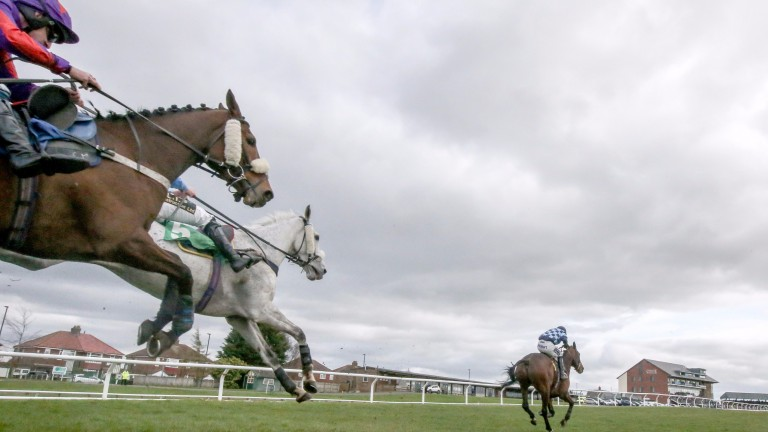 Jumping at Carlisle takes centre stage on Thursday